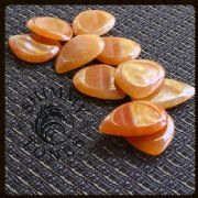 Shimmy Tones - Pack of 4 Guitar Picks | Timber Tones